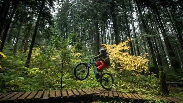 Las bicicletas eléctricas y el peligro de la masificación